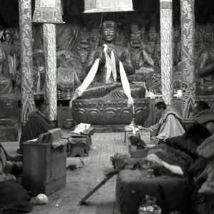 A sutra study session at a monastery, Golok, Qinghai Province. (Photo: Dan Smyer Yu)