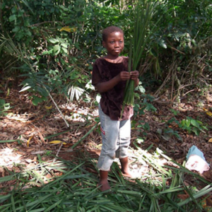Deaf girl making a broom to use at school. (Photo: Annelies Kusters)