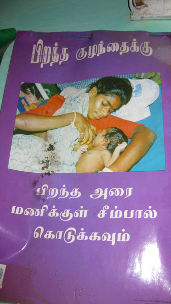 Educational Posters for Maternal Health, Tamil Nadu 2009. (Photo: Gabriele Alex)