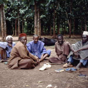 Fulani elders (Cattle Market, Korhogo, Côte d'Ivoire). (Photo: Boris Nieswand)