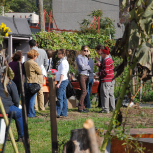 Community Garden, Astoria, New York. (Photo: Dörte Engelkes)