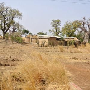 Dry savannah landscape, Upper East Region, Ghana. (Photo: Elena Gadjanova)