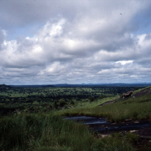 Savannah landscape (Boundali, Côte d'Ivoire). (Photo: Boris Nieswand)