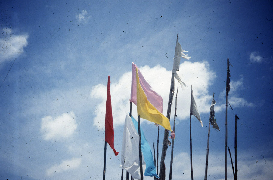 Jhandi (ritual flags makring puja offerings). (Photo: Steven Vertovec)