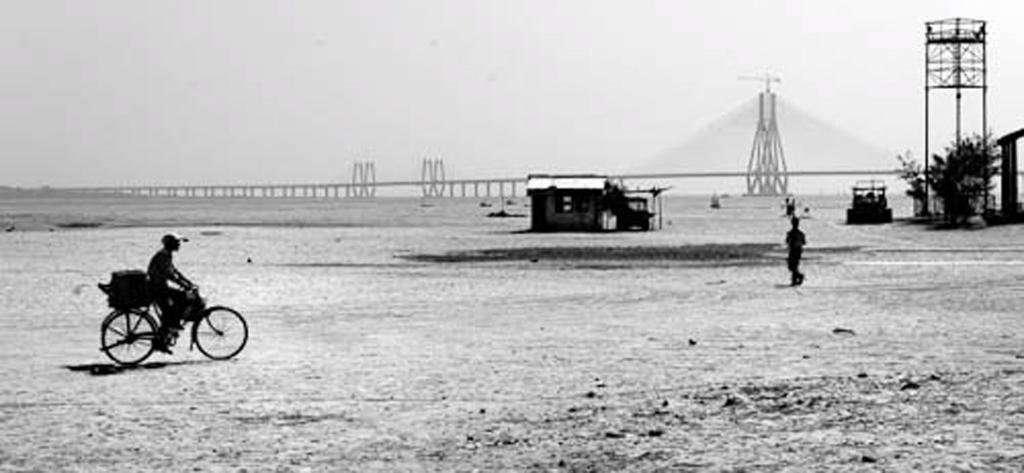 Mahim Bay and Rajiv Gandhi Setu (bridge), Mahim, Mumbai, April 2010. (Photo: Reza Masoudi Nejad)