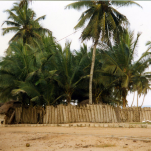 Ewe fishing village (Central Region, Ghana). (Photo: Boris Nieswand)