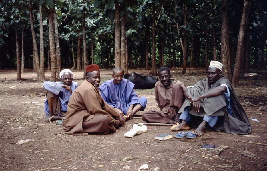 Fulani elders (Cattle Market, Korhogo, Côte d'Ivoire). (Photo: Boris Nieswand)