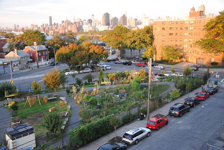 Community Garden, Astoria, New York. (Photo: Dörte Engelkes)