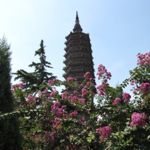 Pagoda at the Linji Temple in Zhengding, Hebei province, China. (Photo: Gareth Fisher)