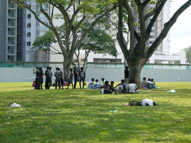 South Asian migrants on a Sunday afternoon, setting up a game of cricket and meeting up with friends on a rare patch of open field. In the background are government-built public housing (HDB) flats. (Photo: Laavanya Kathiravelu)