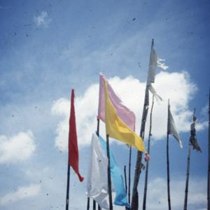 Jhandi (ritual flags makring puja offerings). (Photo: Steven Vertovec)