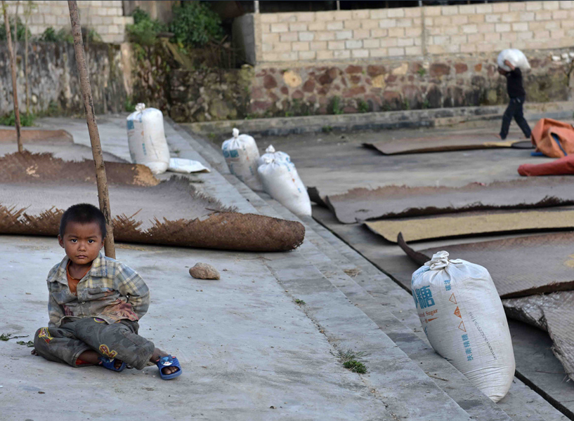 A young boy sits on the concrete pavement in the public square in central Xuelin. In the background, rice, millet, and other grain are spread out to dry on stiff, flat, handwoven straw mats and filled into large, plastic storage sacks for processing and handling. (Photo: Naomi Hellmann)