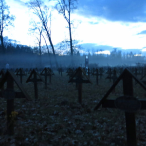 Military cemetery in Lebring-Sankt Margarethen close to Graz for the deceased soldiers of the 2nd Infantry Regiment of Bosnian-Herzegovinian soldiers as part of the Austro-Hungarian Army during the First World War. (Photo: Annika Kirbis)