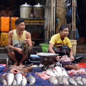 Two fish mongers selling fresh fish. (Photo: Naomi Hellmann)